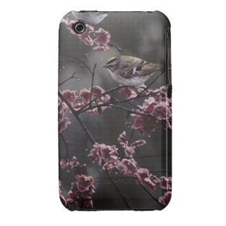 birds and flowers iPhone 3 Case-Mate cases