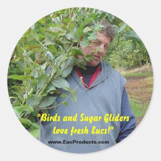 """Birds and Sugar Gliders love fresh Eucs!... Classic Round Sticker"