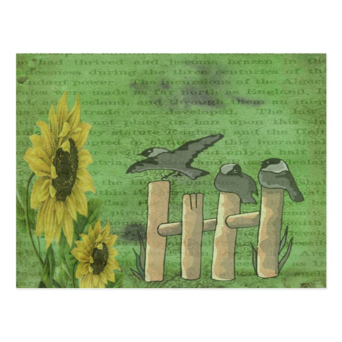 Birds and Sunflowers Postcard
