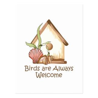 BIRDS ARE ALWAYS WELCOME POSTCARD