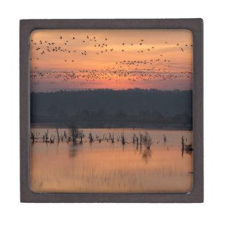 Birds at sunrise jewelry box