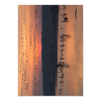 Birds at sunrise magnetic card