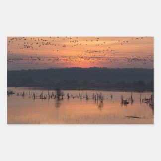 Birds at sunrise rectangular sticker