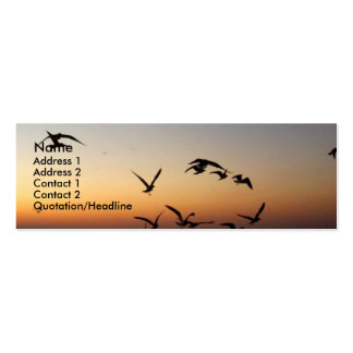 Birds at sunset Profile Card Business Card Template