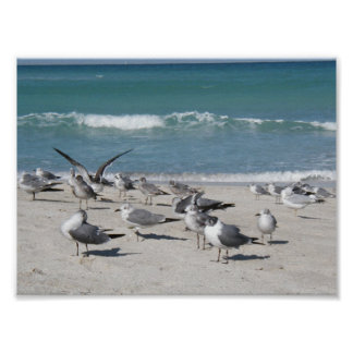 Birds at the beach print