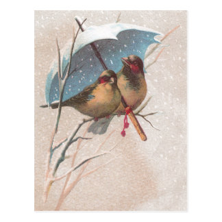 Birds Beneath Blue Umbrella Postcards