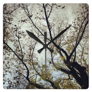 Birds between trees square wall clock