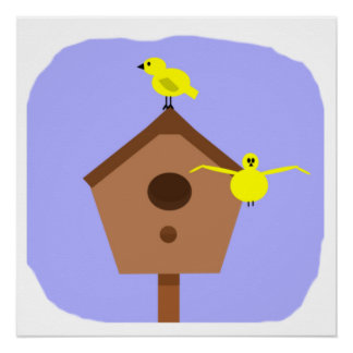 Birds box blue 2 yellow birds one flying of poster