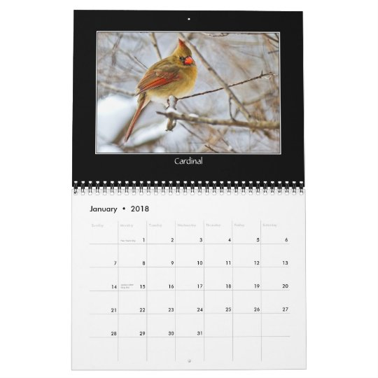 BIRDS CALENDAR - 2012