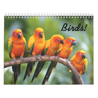 Birds Calender Calendar