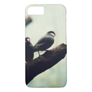 Birds Chillin on Tree Tops Iphone Case