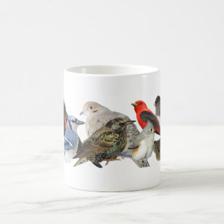 Birds Collage Coffee Mug