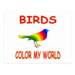 Birds Color My World Postcard