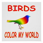 Birds Color My World Posters