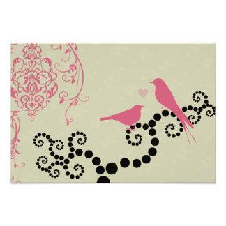 Birds, Dots, Heart, Branches, Swirls - Black Pink Photographic Print