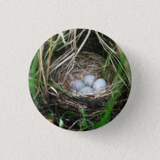 Bird's eggs small button