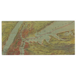 Birds Eye View Map Of New York And Vicinity Wood USB 2.0 Flash Drive