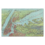 Birds Eye View Map Of New York And Vicinity Tissue Paper