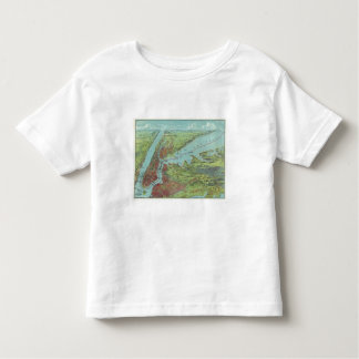 Birds Eye View Map Of New York And Vicinity Toddler T-shirt