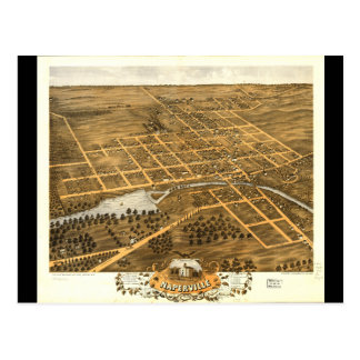 Bird's Eye View of Naperville Illinois (1869) Postcard
