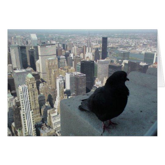 Bird's Eye View of New York Card