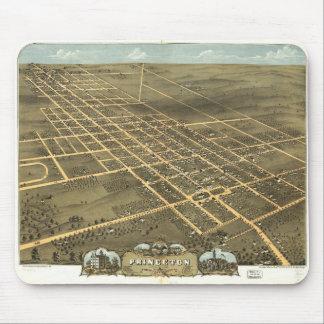 Bird's eye view of Princeton Illinois (1870) Mouse Pad