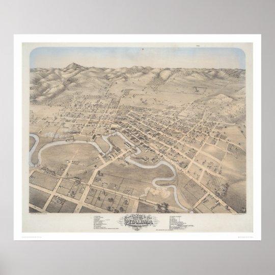 Bird's eye view of the City of Petaluma (1298) Poster