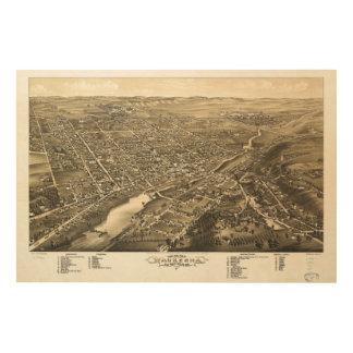 Bird's eye view of Waukesha Wisconsin (1880) Wood Wall Art