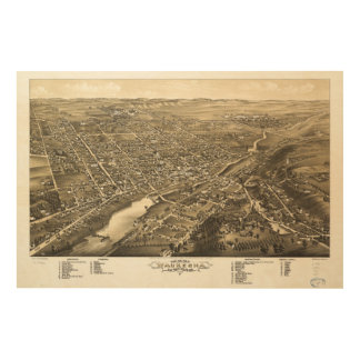 Bird's eye view of Waukesha Wisconsin (1880) Wood Wall Decor