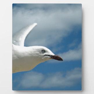Birds_Eye_View,_ Plaque