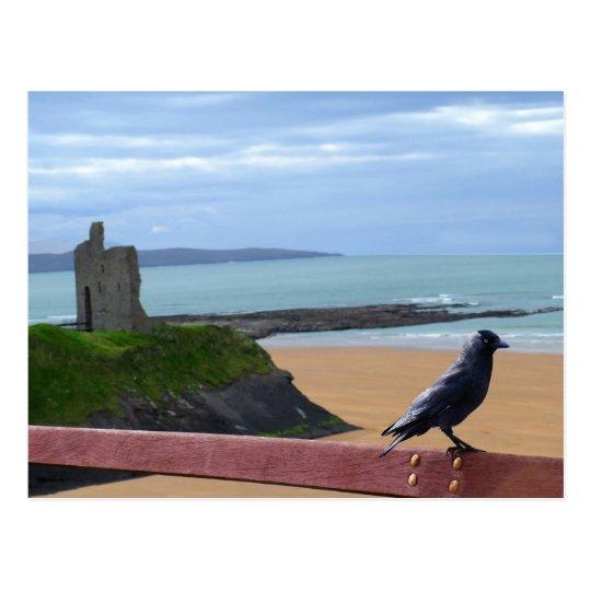 birds eye view postcard