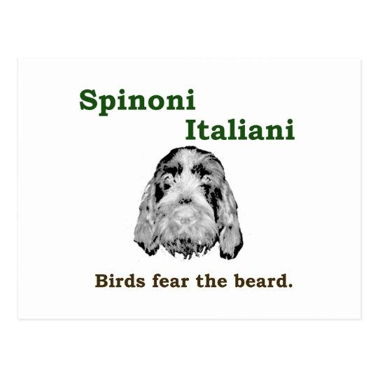 Birds Fear The  Beard Postcard