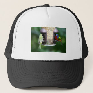 Birds Feeding Trucker Hat