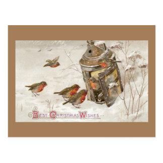 Birds Find Shelter in Lantern Vintage Christmas Postcard