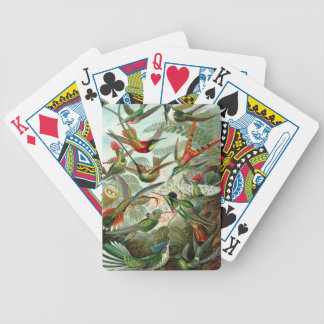 birds flowers flower bird nature vintage painting bicycle playing cards