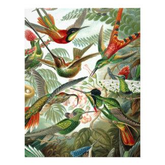 birds flowers flower bird nature vintage painting letterhead