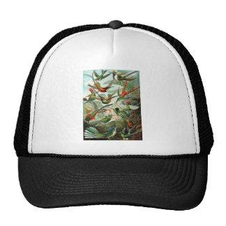 birds flowers flower bird nature vintage painting trucker hat