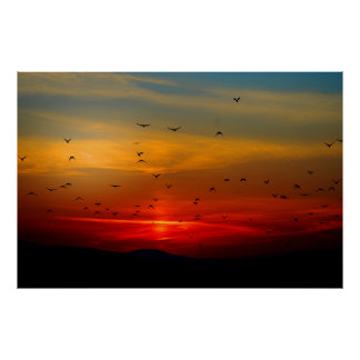Birds Fly Into Sunset Extra Large Poster