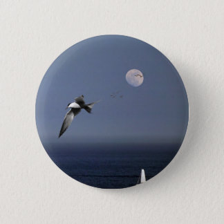 Birds Flying Over Boats At Sea Button