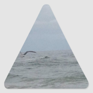 Birds Flying Over the Atlantic Triangle Sticker