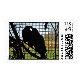 Birds From The Zoo - Stamp