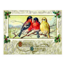 Birds & Holly Postcard