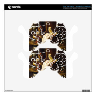 Birds in a Park by Melchior d'Hondecoeter Skins For PS3 Controllers