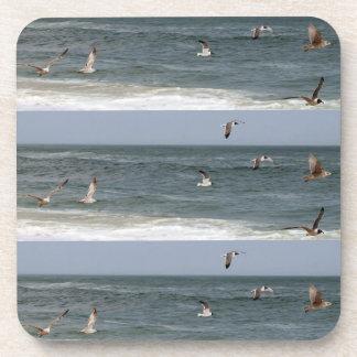 Birds In Flight by Shirley Taylor Coaster
