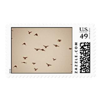 Birds In Flight vintage sepia Postage