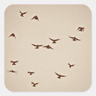 Birds In Flight vintage sepia Square Sticker
