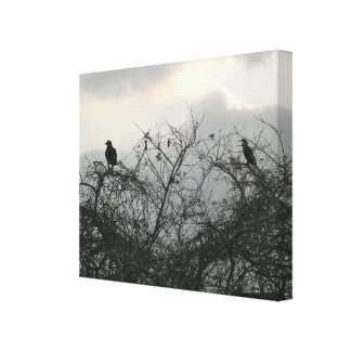 Birds in the Storm Stretched Canvas Prints