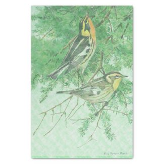 Birds in Tree Boughs Tissue Paper