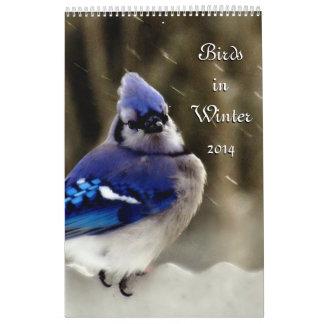 Birds in Winter Calendar