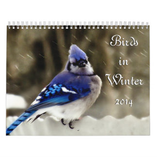 Birds in Winter Calendar